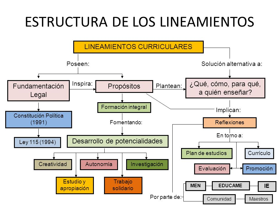 ESTRUCTURA DE LOS LINEAMIENTOS