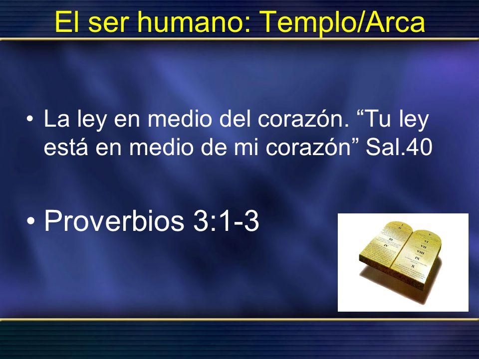 El ser humano: Templo/Arca