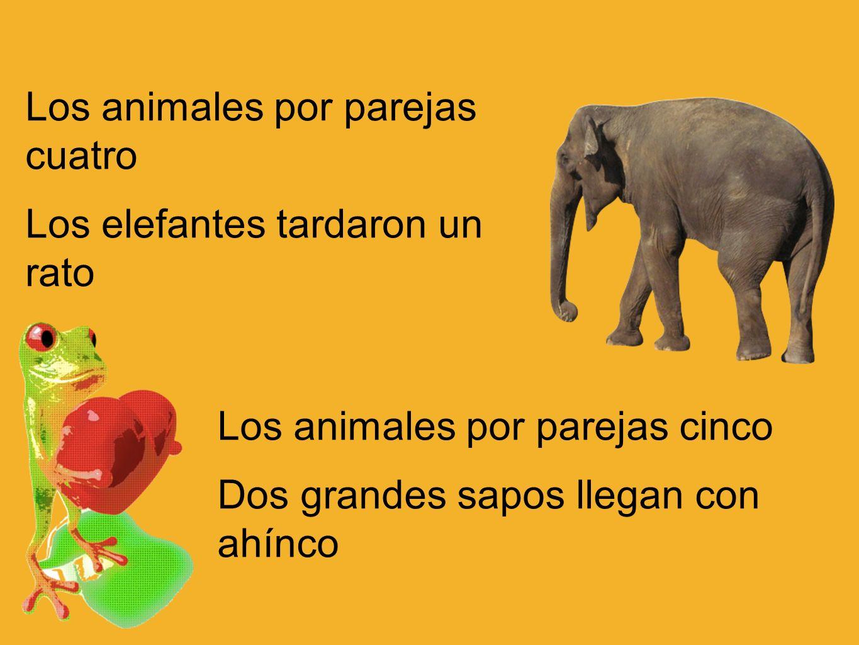 Los animales por parejas cuatro