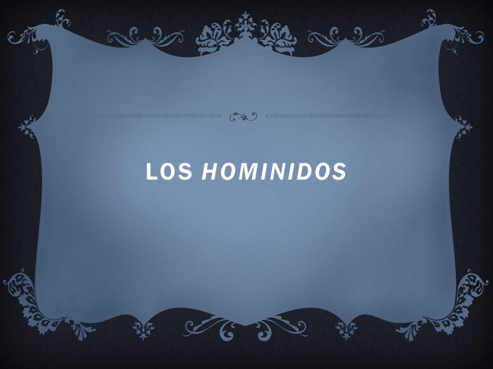 Los hominidos