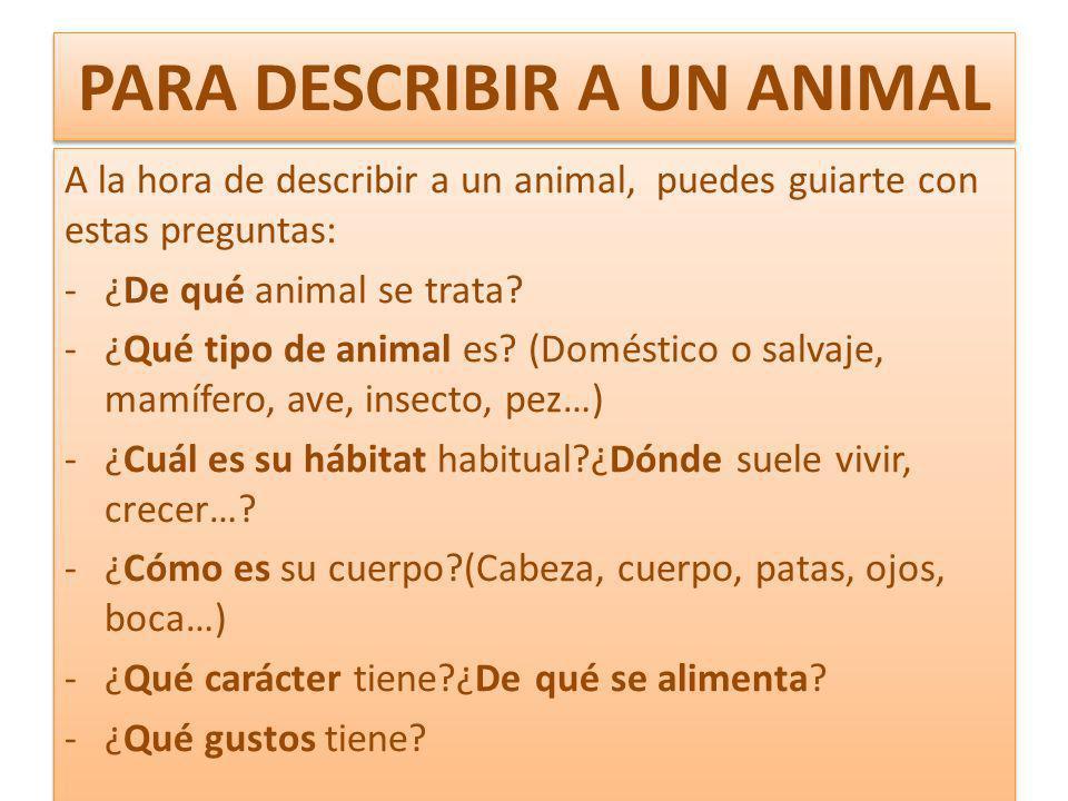 PARA DESCRIBIR A UN ANIMAL