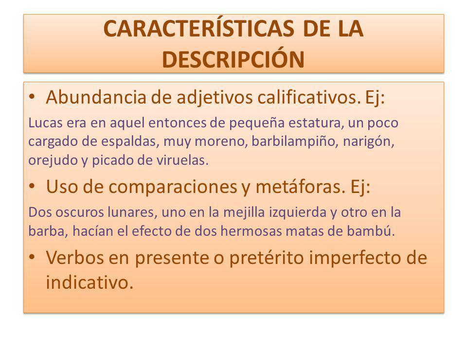 CARACTERÍSTICAS DE LA DESCRIPCIÓN