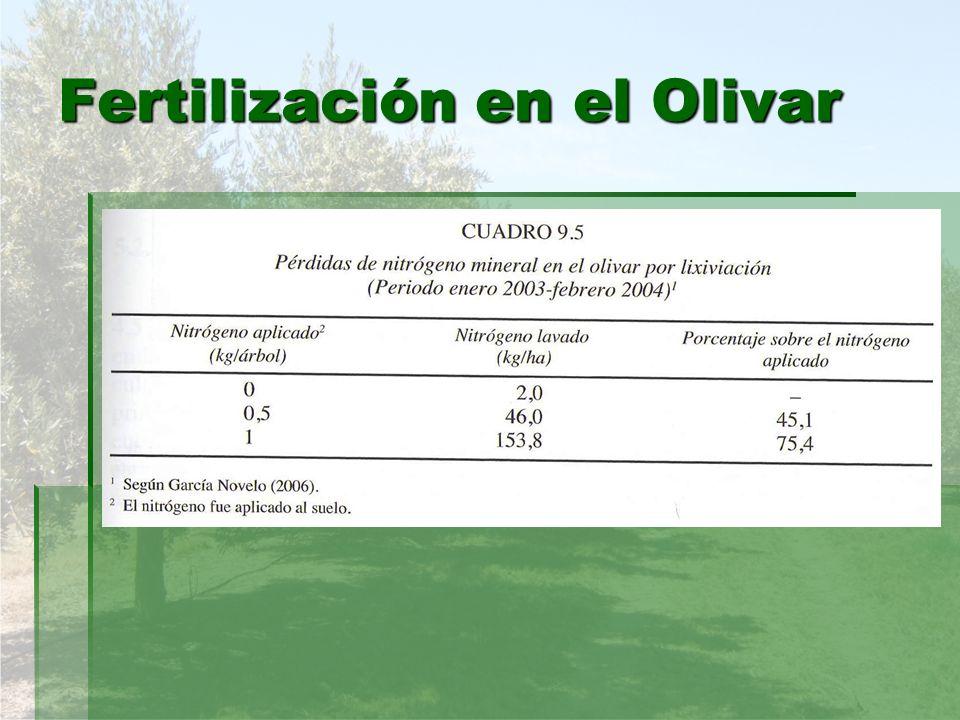 Fertilización en el Olivar