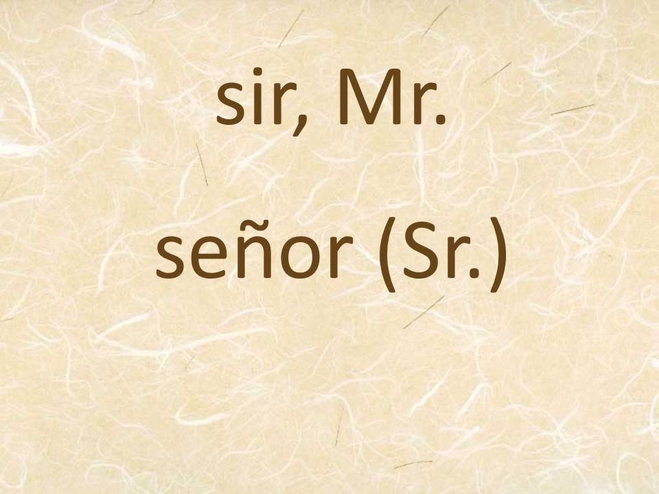 sir, Mr. señor (Sr.)