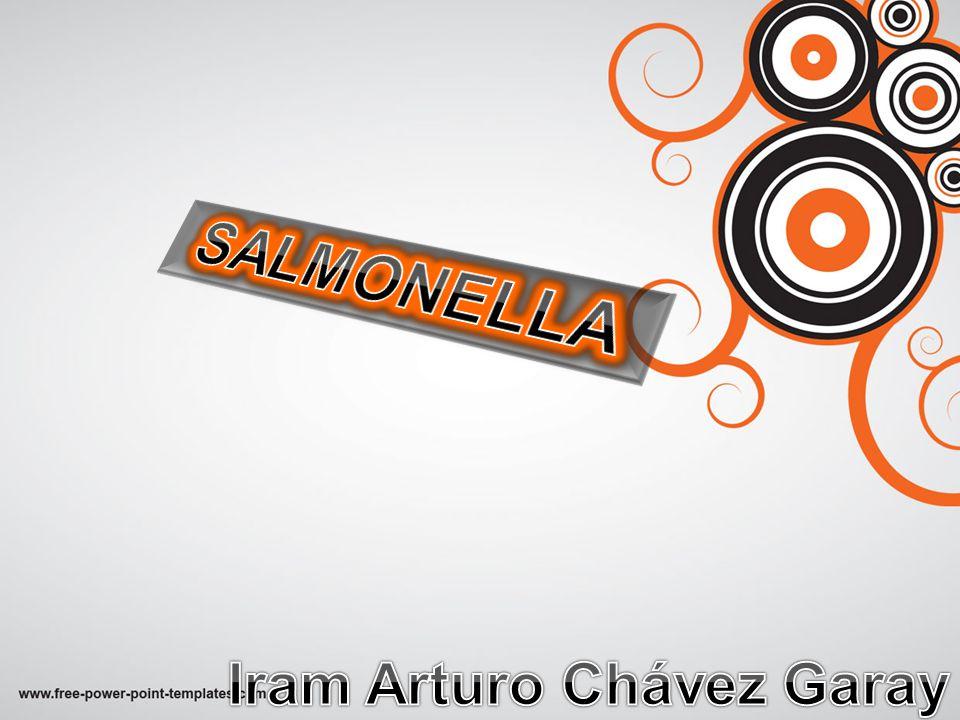 Iram Arturo Chávez Garay