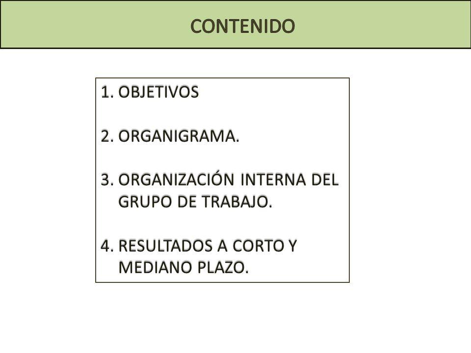 CONTENIDO OBJETIVOS ORGANIGRAMA.