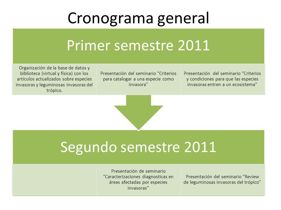 Cronograma general Primer semestre 2011