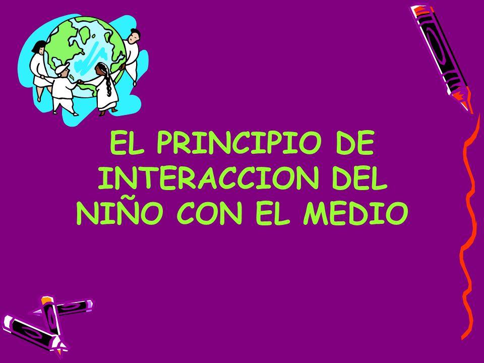 EL PRINCIPIO DE INTERACCION DEL NIÑO CON EL MEDIO