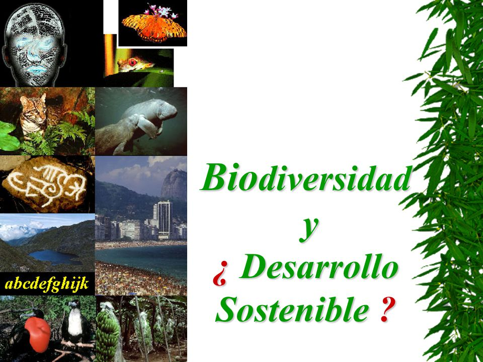 ¿ Desarrollo Sostenible