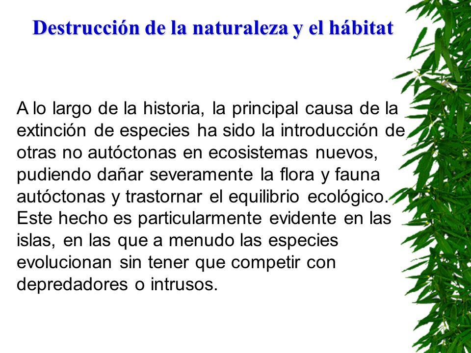 Destrucción de la naturaleza y el hábitat