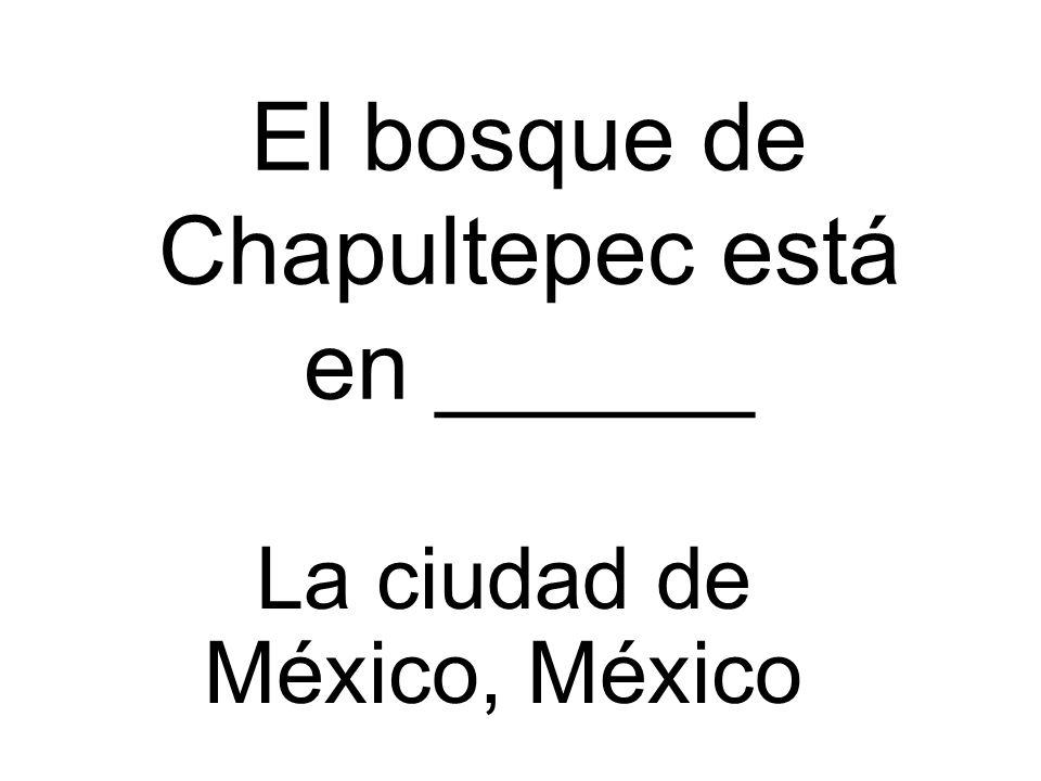 El bosque de Chapultepec está en ______
