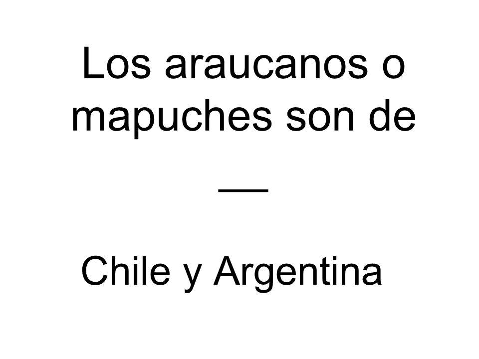 Los araucanos o mapuches son de __