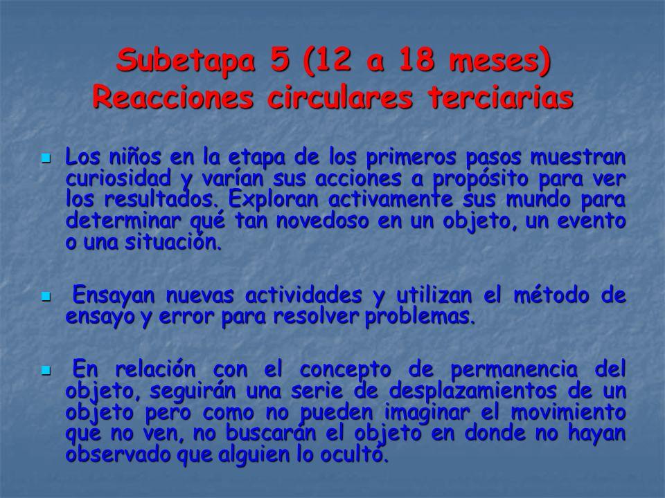 Subetapa 5 (12 a 18 meses) Reacciones circulares terciarias