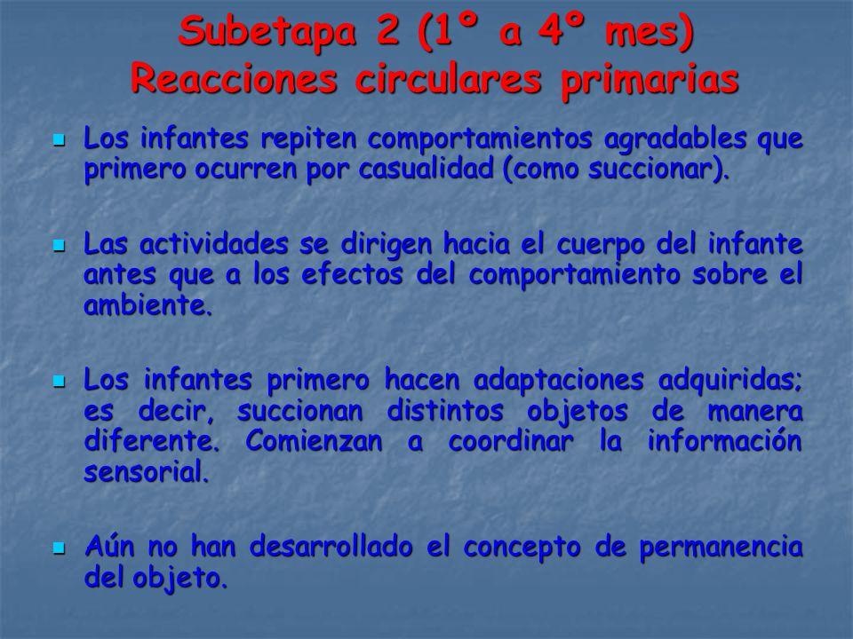 Subetapa 2 (1º a 4º mes) Reacciones circulares primarias