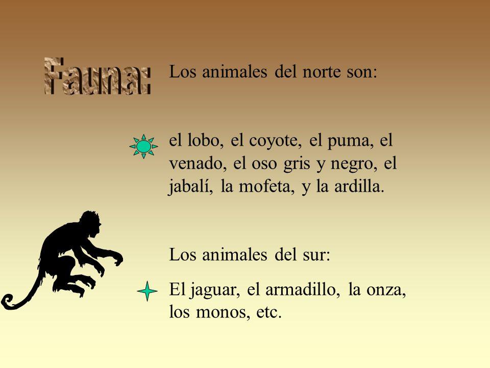 Fauna: Los animales del norte son: