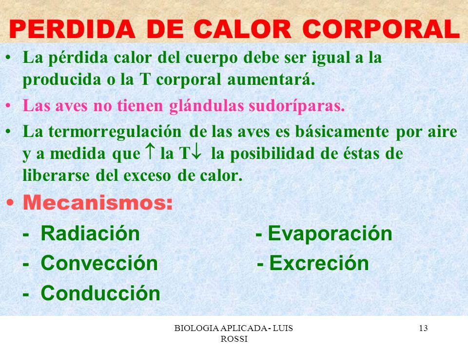 PERDIDA DE CALOR CORPORAL