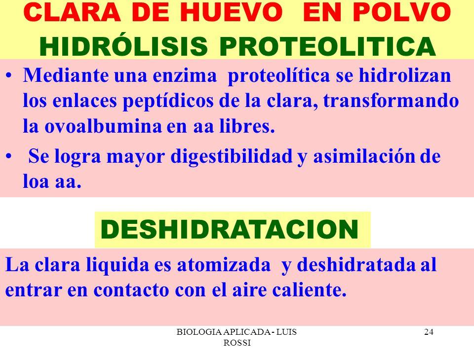 CLARA DE HUEVO EN POLVO HIDRÓLISIS PROTEOLITICA