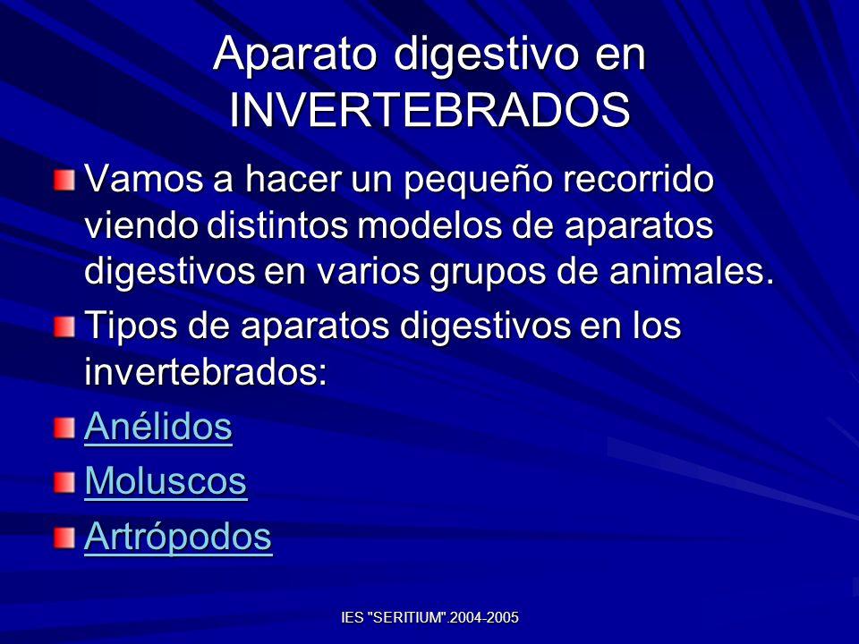 Aparato digestivo en INVERTEBRADOS