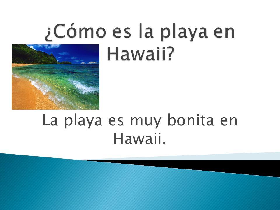 ¿Cómo es la playa en Hawaii
