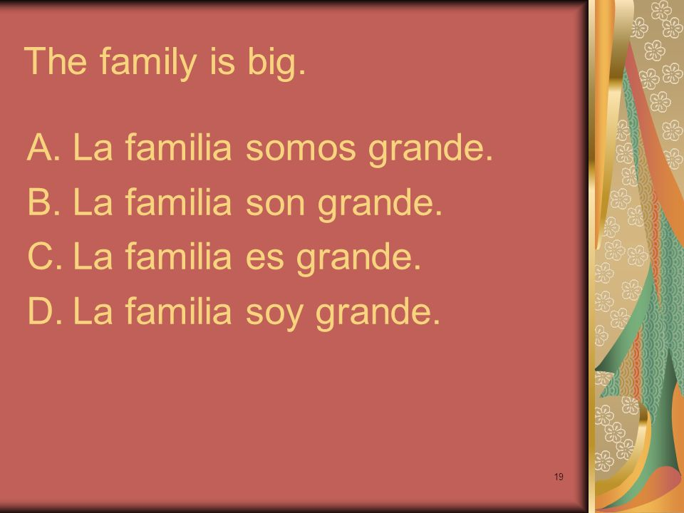 The family is big. La familia somos grande. La familia son grande.