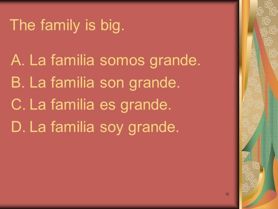The family is big.La familia somos grande.La familia son grande.