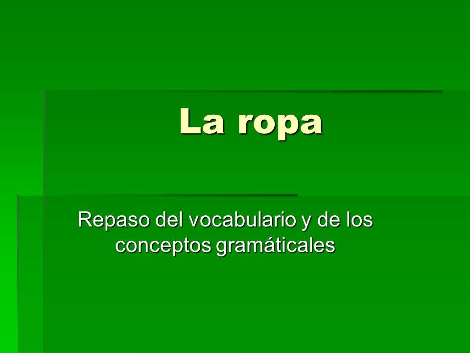 Repaso del vocabulario y de los conceptos gramáticales