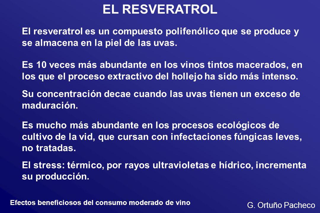 EL RESVERATROL El resveratrol es un compuesto polifenólico que se produce y se almacena en la piel de las uvas.