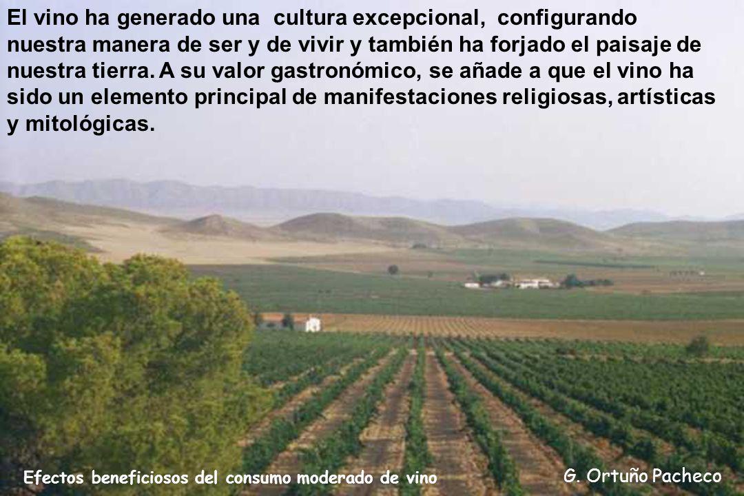 El vino ha generado una cultura excepcional, configurando nuestra manera de ser y de vivir y también ha forjado el paisaje de nuestra tierra. A su valor gastronómico, se añade a que el vino ha sido un elemento principal de manifestaciones religiosas, artísticas y mitológicas.