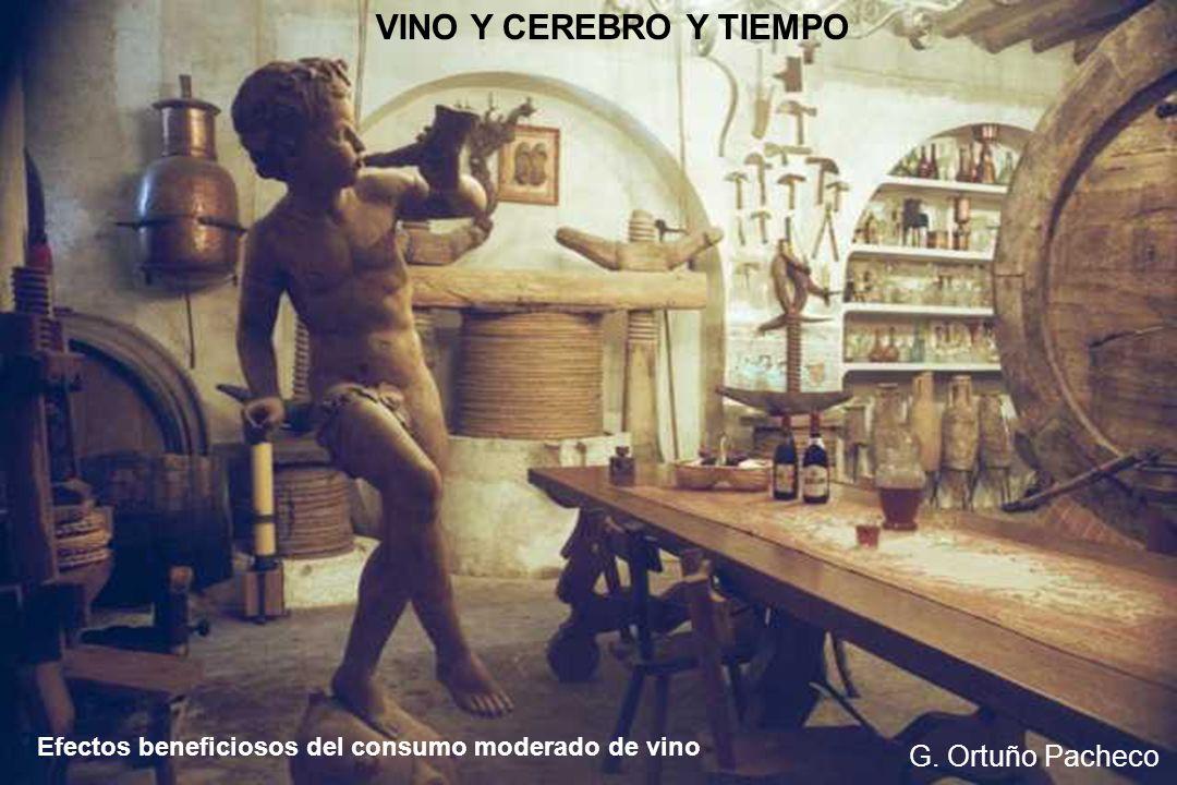 VINO Y CEREBRO Y TIEMPO G. Ortuño Pacheco