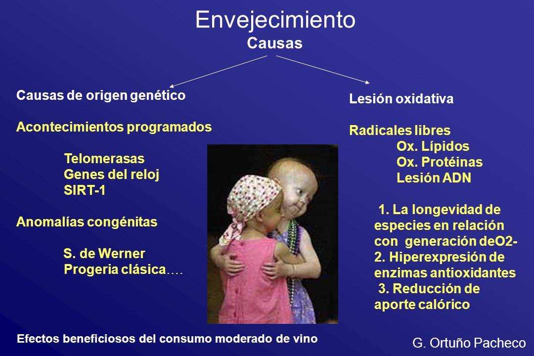 Envejecimiento Causas Causas de origen genético Lesión oxidativa