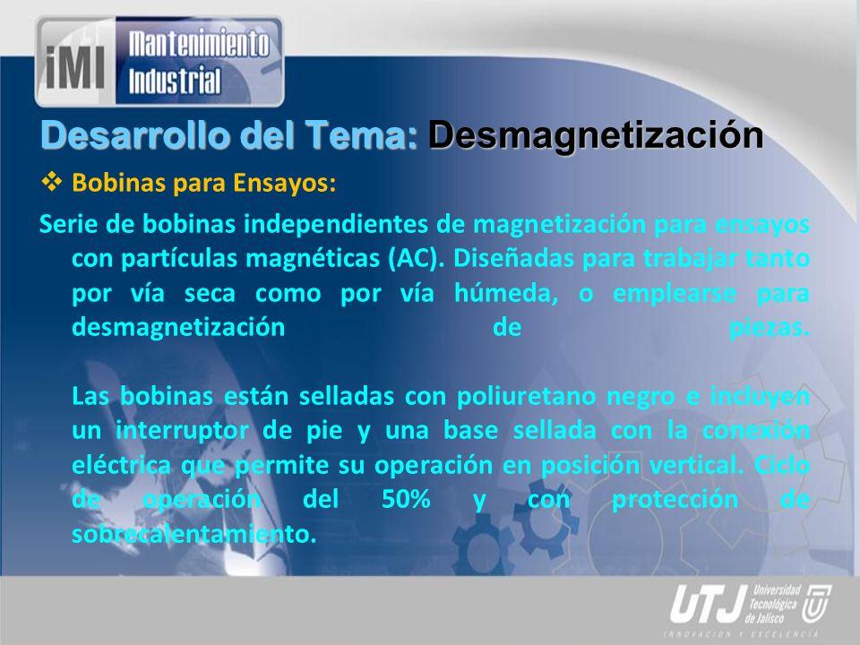 Desarrollo del Tema: Desmagnetización