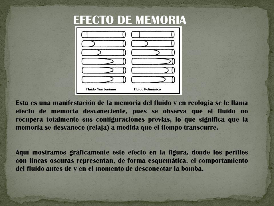 EFECTO DE MEMORIA