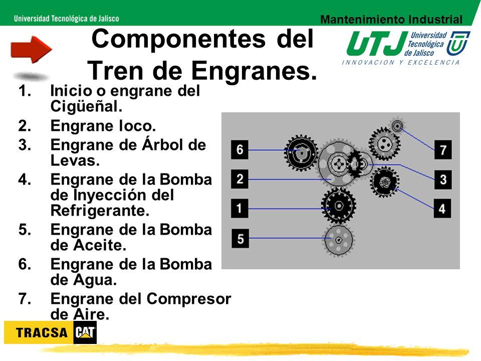 Componentes del Tren de Engranes.