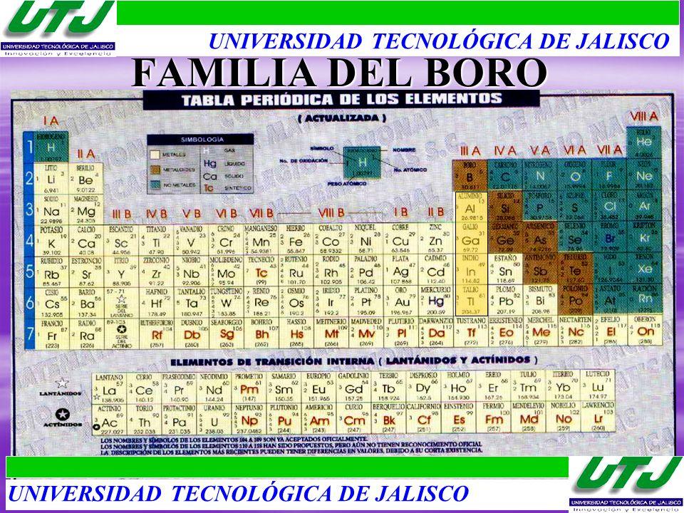 FAMILIA DEL BORO UNIVERSIDAD TECNOLÓGICA DE JALISCO