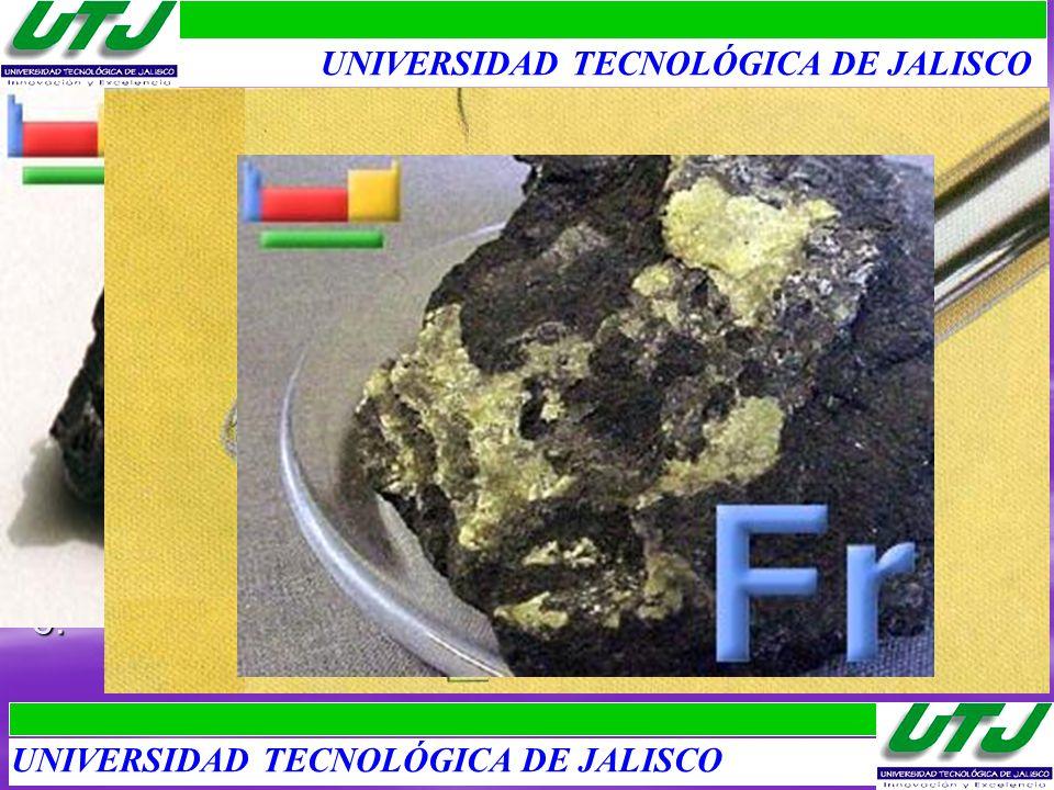 UNIVERSIDAD TECNOLÓGICA DE JALISCO