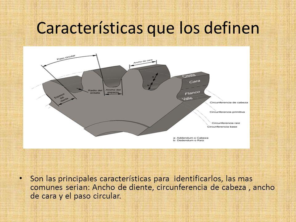 Características que los definen