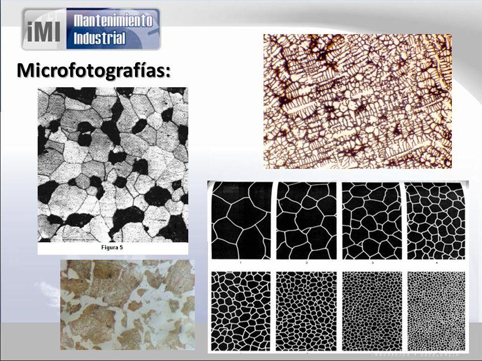 Microfotografías: