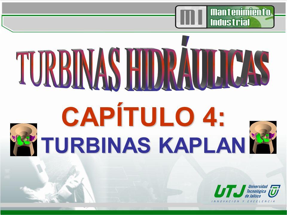 CAPÍTULO 4: TURBINAS KAPLAN
