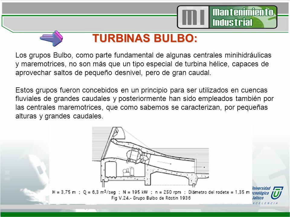 TURBINAS BULBO: