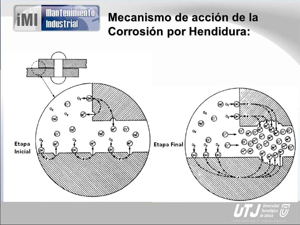 Mecanismo de acción de la Corrosión por Hendidura: