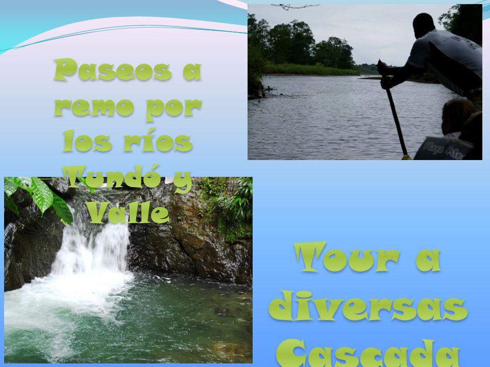 Paseos a remo por los ríos Tundó y Valle Tour a diversas Cascadas