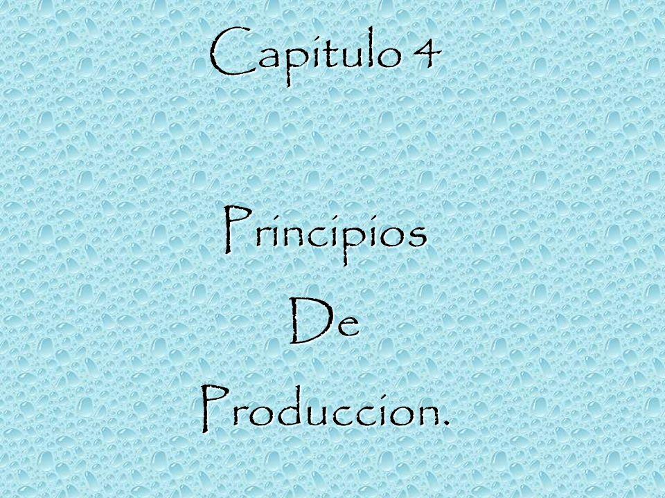 Capitulo 4 Principios De Produccion.