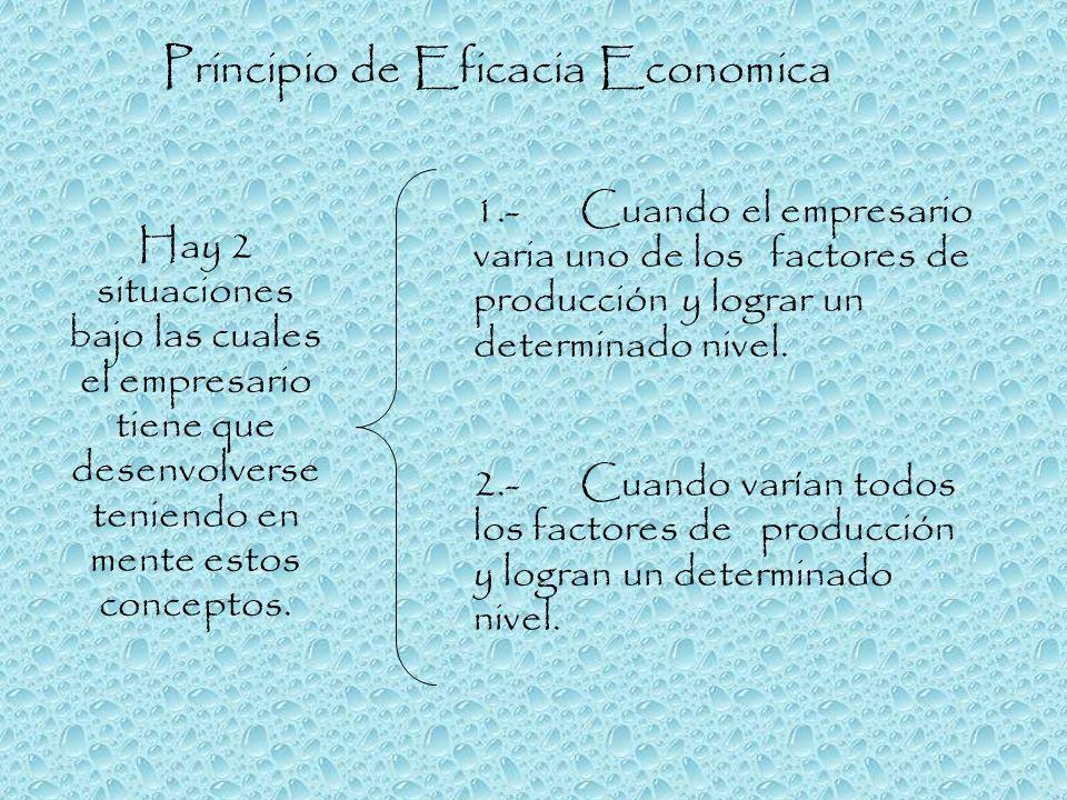 Principio de Eficacia Economica