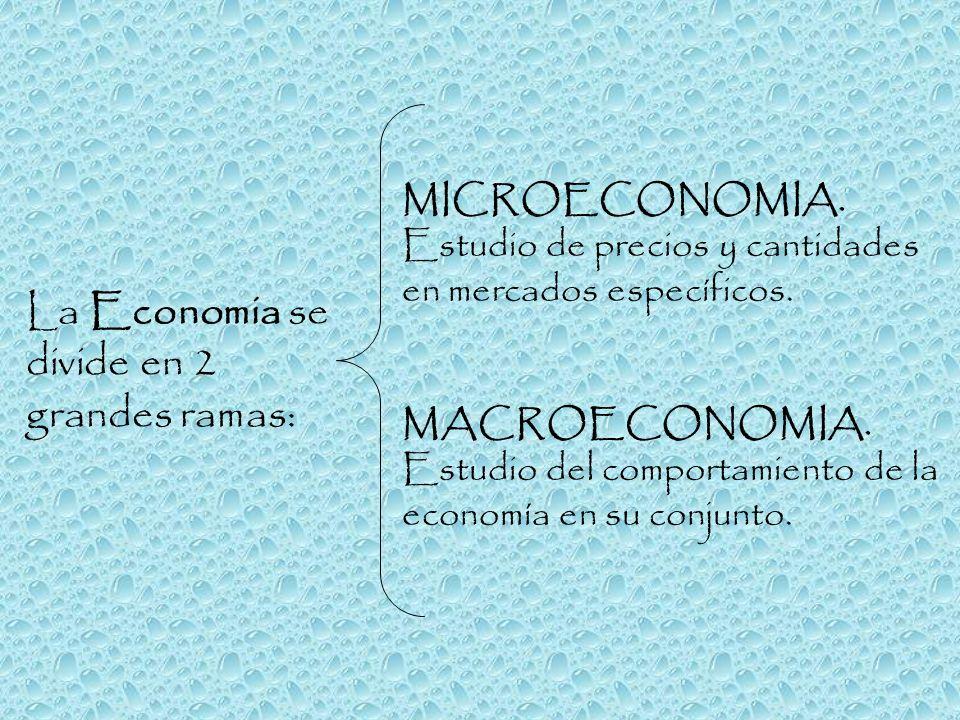 La Economia se divide en 2 grandes ramas: