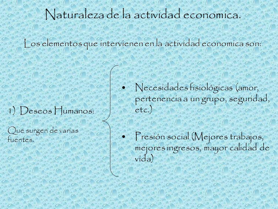 Naturaleza de la actividad economica.