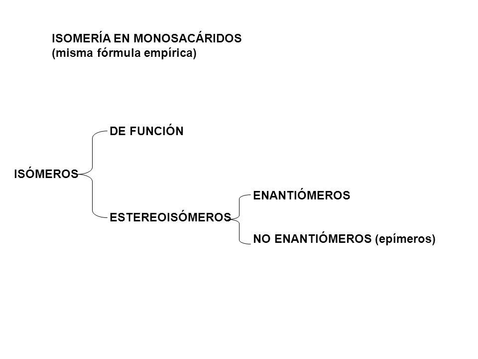 ISOMERÍA EN MONOSACÁRIDOS (misma fórmula empírica)