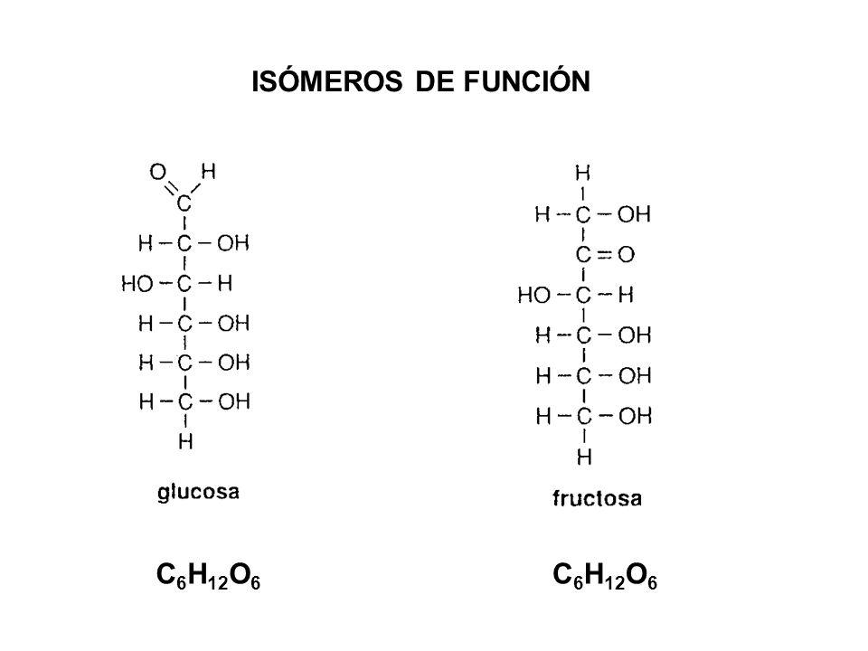 ISÓMEROS DE FUNCIÓN C6H12O6 C6H12O6