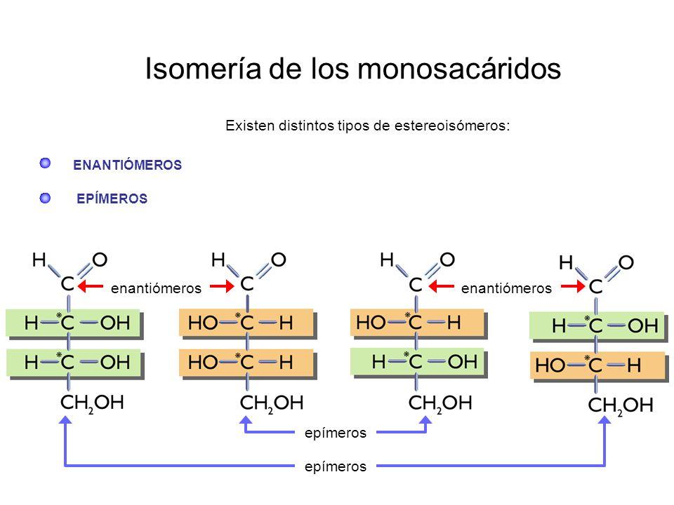 Isomería de los monosacáridos