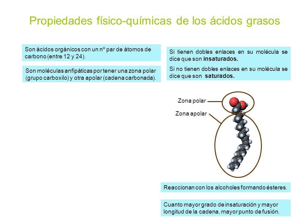 Propiedades físico-químicas de los ácidos grasos