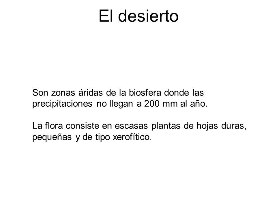El desierto Son zonas áridas de la biosfera donde las precipitaciones no llegan a 200 mm al año.
